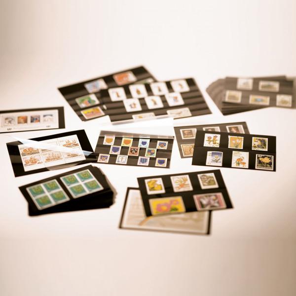 Einsteckkarten Standard PS, 158x113 mm, 4 klare Streifen mit Deckblatt,schw.Karton, p.100