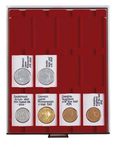 Velourseinlage, dunkelrot, mit 12 rechteckigen Fächern für REBECK COIN L Münzrähmchen 75x50 mm