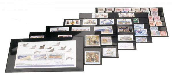Steck-Karten mit 5 Streifen, 210 x 143 mm, 10er-Packung